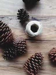 pinecone ornaments make haus