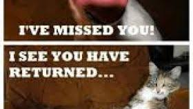 Feed Me Seymour Meme - feed me seymour quote enam valentine