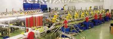 automate your food and beverages industry