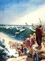 معجزة النبي موسى كوريا