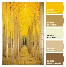 86 best interior paint colors images on pinterest colors color