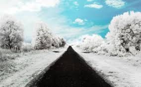 Way To Winter Winter Road Wallpaper Free