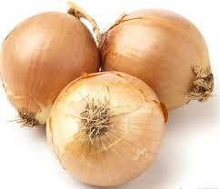 50 off loose or bagged vidalia onions printable coupons my