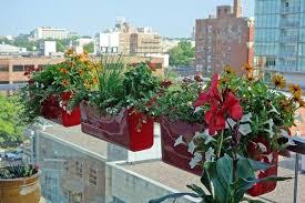 planters for deck railing built in planters against deck railing