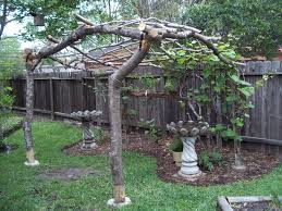 Backyard Vineyard Design by Grape Vine Arbor Made With Reclaimed Limbs From The Front Yard