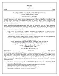 Samples Of Professional Resumes by Operations Professional Resume