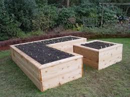 raised garden beds for sale wonderful raised vegetable garden beds for sale livetomanage com