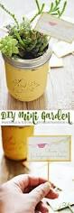 286 best gardening ideas u0026 inspiration images on pinterest