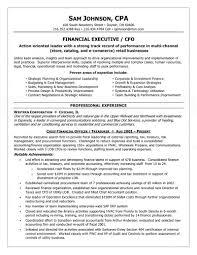 sample financial controller resume executive cfo resume cover