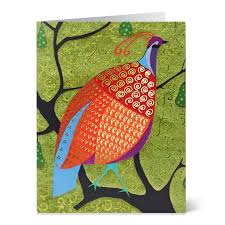 outstanding wildlife cards turkey on sale