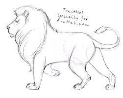 coloring extraordinary draw lions 8iabxkrat