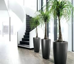 indoor plant pots canada houstons online indoor plant pot store