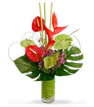 tropical flower arrangements tropical modern orchids flowers and arrangements glenview