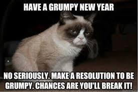 New Grumpy Cat Meme - some things you did not know about grumpy cat facebook memes