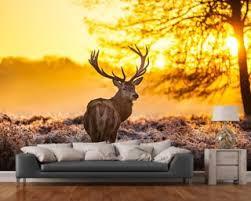 stag wallpaper u0026 deer wall murals wallsauce usa