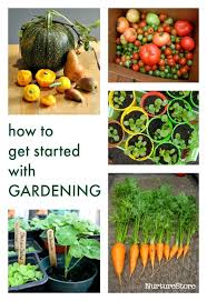 How To Start A Garden Bed Best 25 Kid Garden Ideas On Pinterest Gardens For Kids Garden
