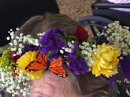 Kentucky Derby Flowers - spring flowers archives eat breathe garden diy projects