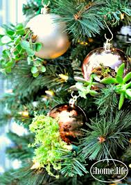 diy succulent ornaments home