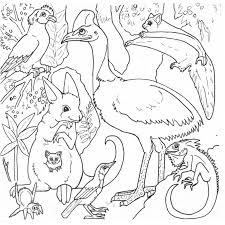 Coloring Rainforest Coloring Pages Pdf Archivesdimals Printable Forest Animals Coloring Pages