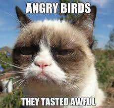 New Grumpy Cat Meme - 701 best life is good not tard the grumpy cat images on