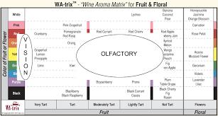 beyond the wine aroma wheel u0027wine aroma matrix u0027 pairs olfactory