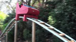 dad builds 180 foot roller coaster in yard ny daily news