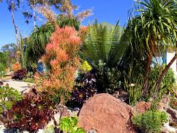 fire resistant plants for your landscape and property