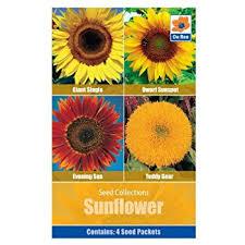 sunflower seed packets sunflower seeds co uk garden outdoors