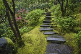 japanese garden pictures what u0027s behind japan u0027s moss obsession iflscience