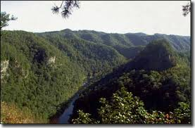 Kentucky scenery images These 10 roads in kentucky are a unforgettably scenic drive jpg
