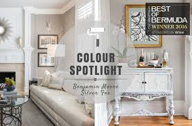color spotlight u2013 benjamin moore silver fox rowe spurling paint