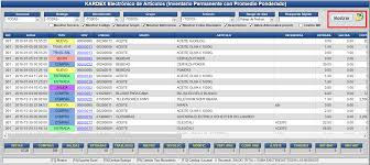 almacen kardex electronico para articulos