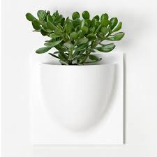 wall flower pots white four pack by grattify notonthehighstreet com