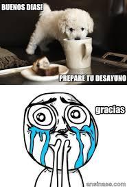 Buenos Memes En Espaã Ol - memes en español buenos días prepare tu desayuno memes