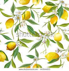 seamless lemon pattern seamless floral pattern lemon fruits background stock photo photo