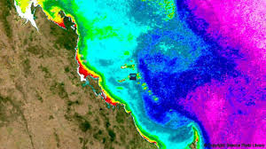 Coral Reefs Of The World Map by Bbc Future How Can We Save Our Dying Coral Reefs