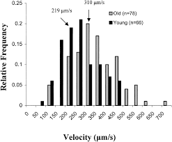 effects of aging on capillary geometry and hemodynamics in rat