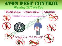 Bed Bug Exterminator Detroit Hygea Natural Bed Bug Exterminator Natural Bugs U0026 Lice Eradicator
