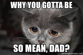 Mean Dad Meme - why you gotta be so mean dad sadcat meme generator