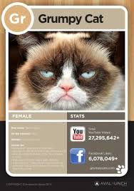 Grumpy Cat Has Died Youtube - the interactive purriodic table of internet cats blog about