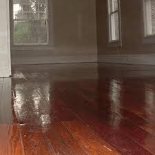 wood floor cleaning pinellas hillsborough