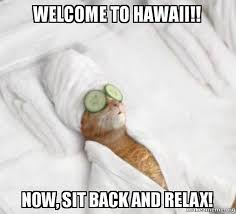 Hawaii Meme - welcome to hawaii now sit back and relax pered cat meme