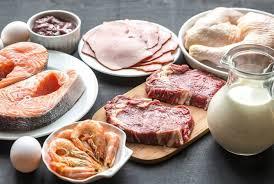 dukan diet diets u0026 lifestyle