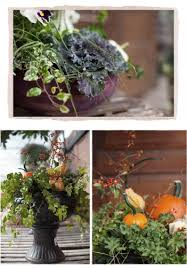 Winter Container Garden Ideas 36 Best Winter Container Gardening Ideas And Pictures Awesome