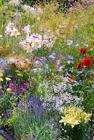 Pictures Of Gardens And Flowers Best 25 Meadow Garden Ideas On Pinterest Wild Flower Meadow