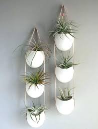 indoor hanging garden indoor vertical wall garden indoor vertical