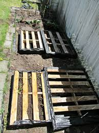 Raised Garden Beds From Pallets - how to make a weedless raised wood pallet garden bed