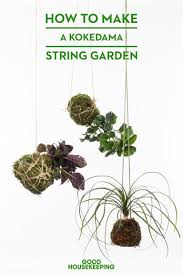 How To Build An Herb Garden How To Make A Kokedama Hanging Garden
