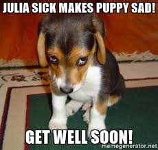 Sick Puppy Meme - memes to make you smile when you are sick as a dog friday