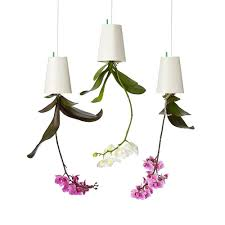 Indoor Planter Pots by Compare Prices On Indoor Planters Pots Online Shopping Buy Low